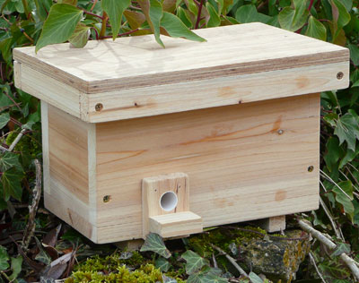 How to attract bumbles to an artificial nest   Honey Bee Suite