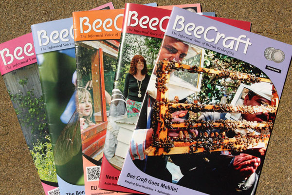 Bee-Craft-covers