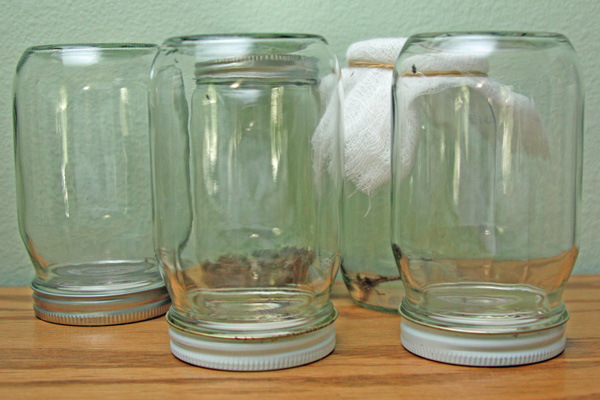 Zombees-in-mason-jars