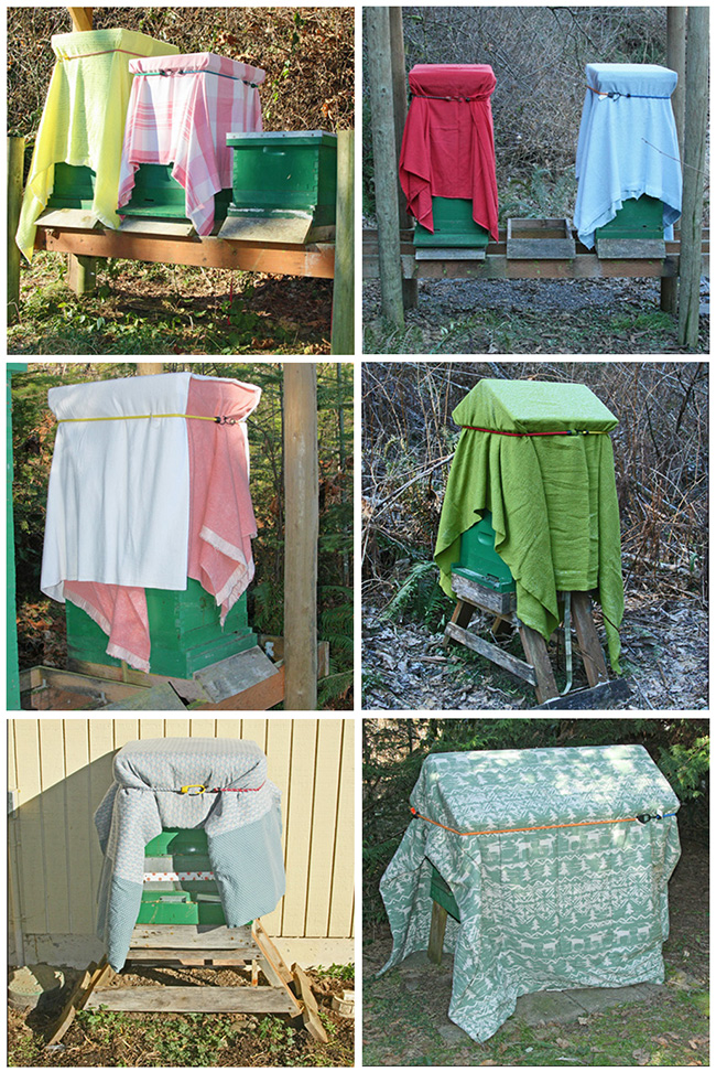 Hives-with-real-quilts