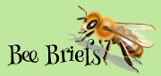 Bee Brief bee