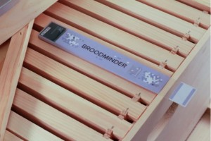 Gift ideas for Beekeepers: The BroodMinder