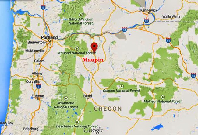 MaupinOregon Honey Bee Suite - Google maps oregon