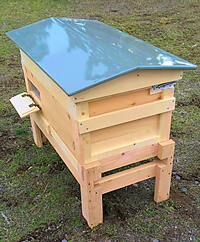 Valkyrie Long Hive