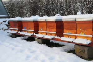 Snow at hive entrance